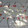 Cebeci'de 10 Ekim anması yapıldı