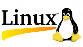 İlk resmi Linux sürümü yirmi beş yaşında